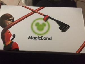 My Magic Bands arrived in the cutest box though, and yes my band is pink.